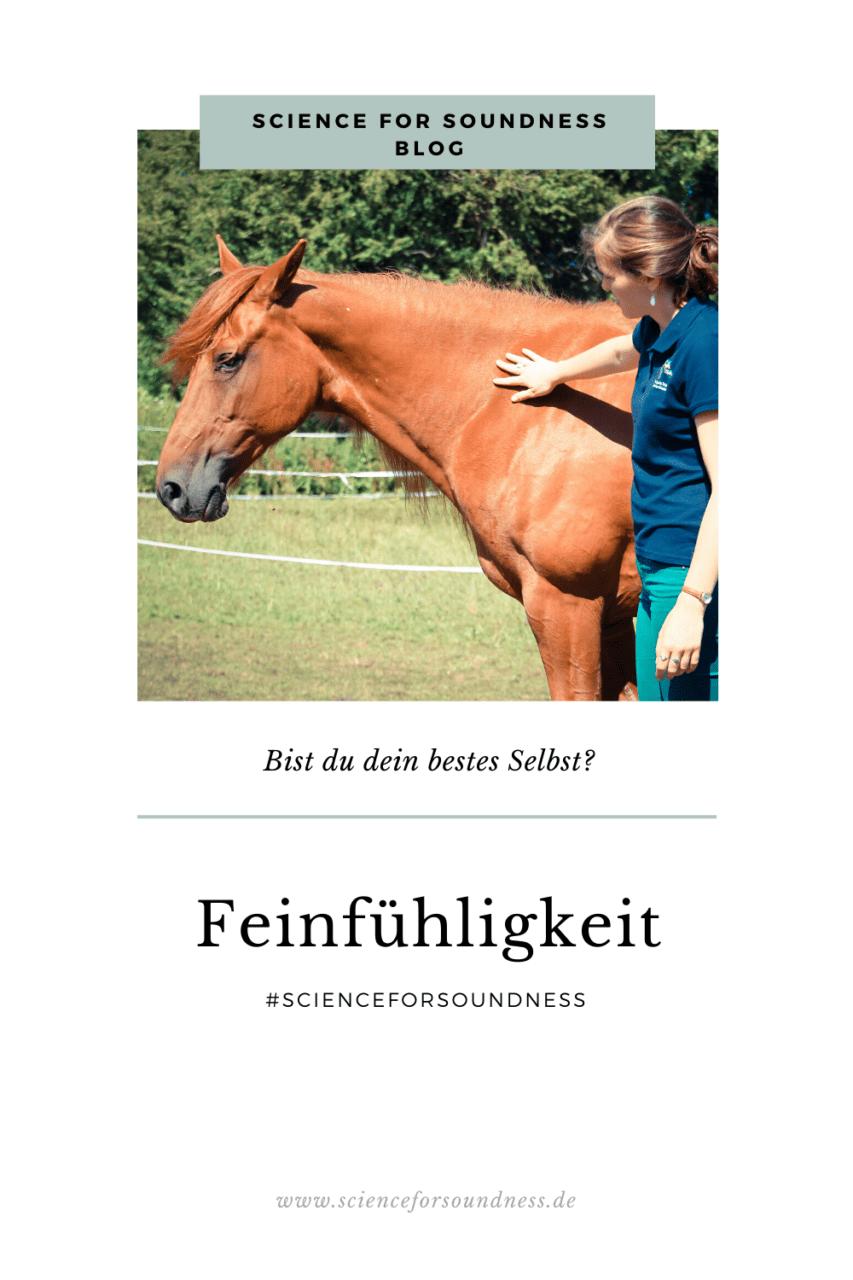 Feinfühligkeit wird von jedem Pferdemenschen anders interpretiert. Feinfühligkeit bedeutet für mich ein ganzheitlicher Ansatz, dem Pferd eine Stimme zu geben und auf die jeweilige Situation individuell einzugehen.